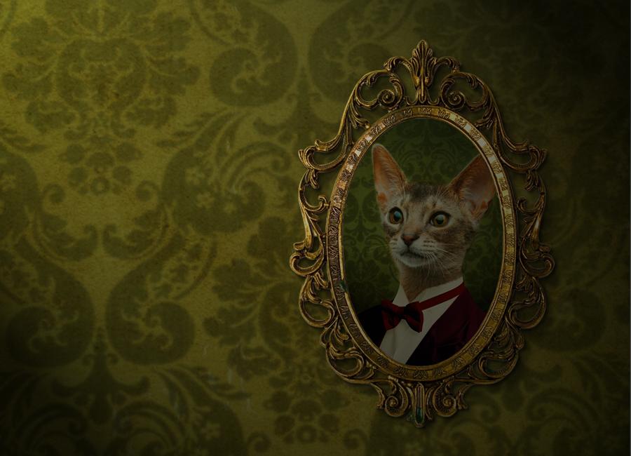 Portrait du chat, festival Nicéphore+ 2016